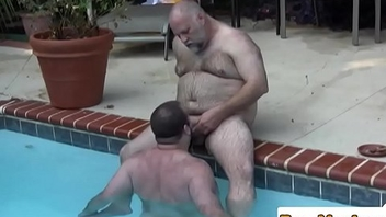 Polar hold to dicksucked in the pool